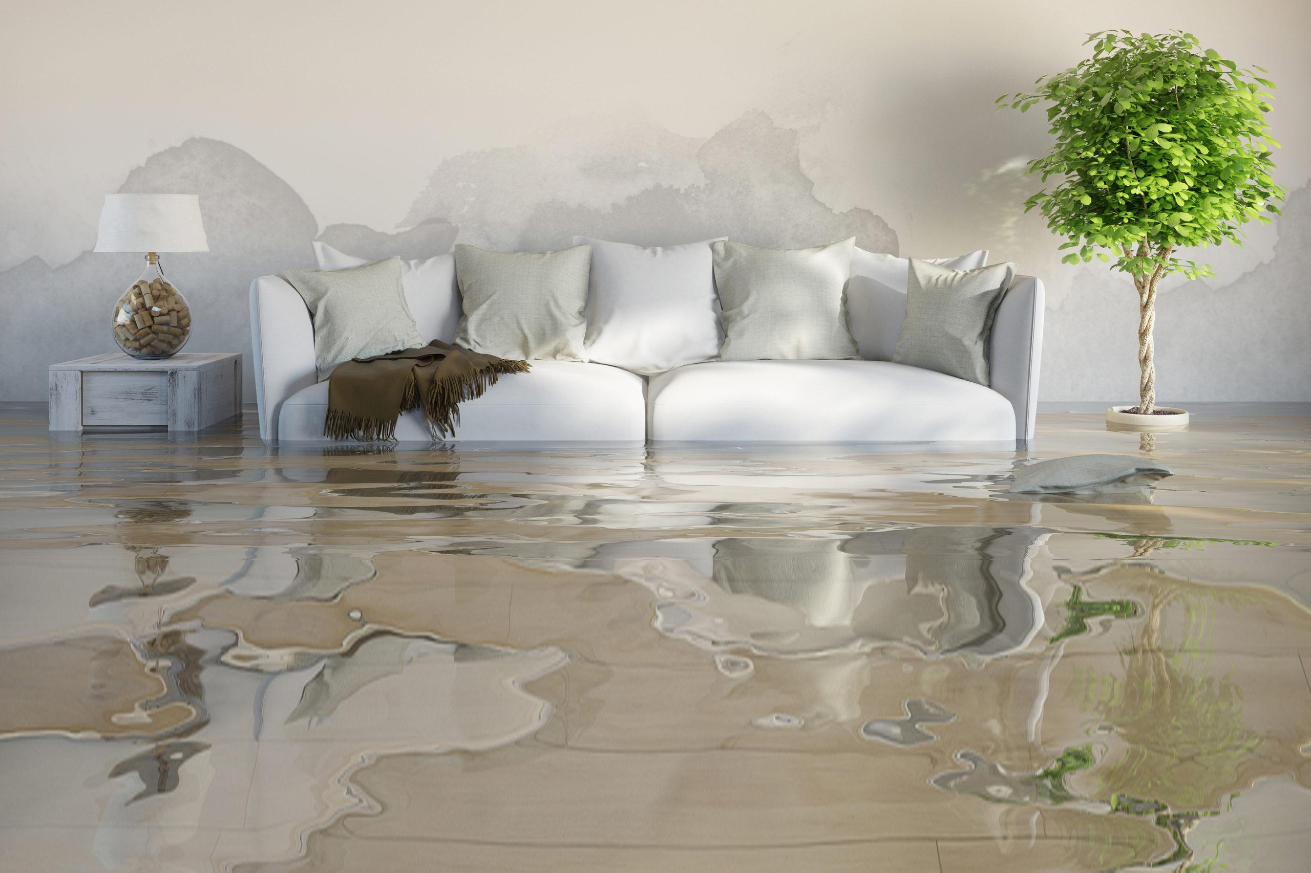 Water Damage Restoration Annapolis