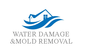 water and mold damage restoration
